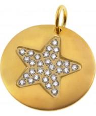 Edblad 41630056 Damer charmentity stjärna hängsmycke